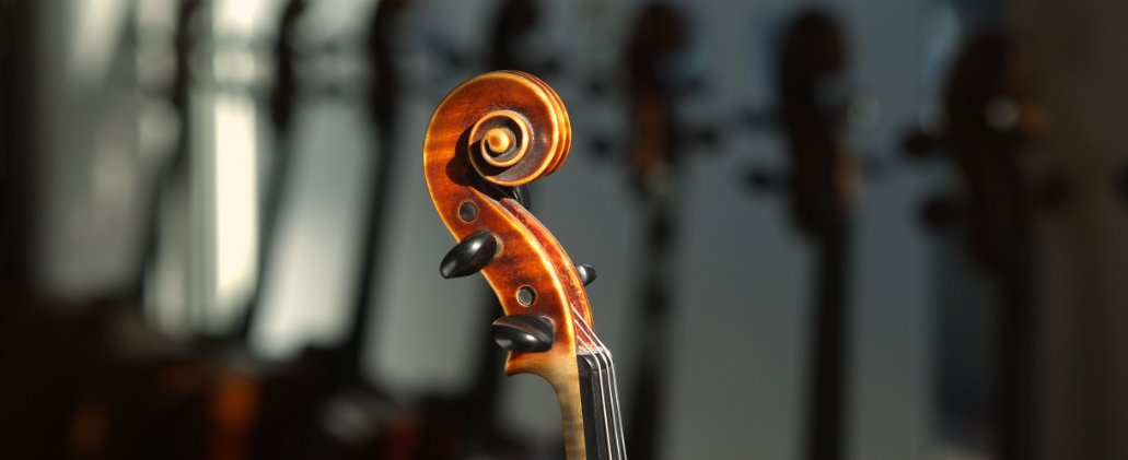 scroll of an old fine violin