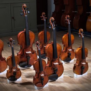 violins, violas and cellos for rent